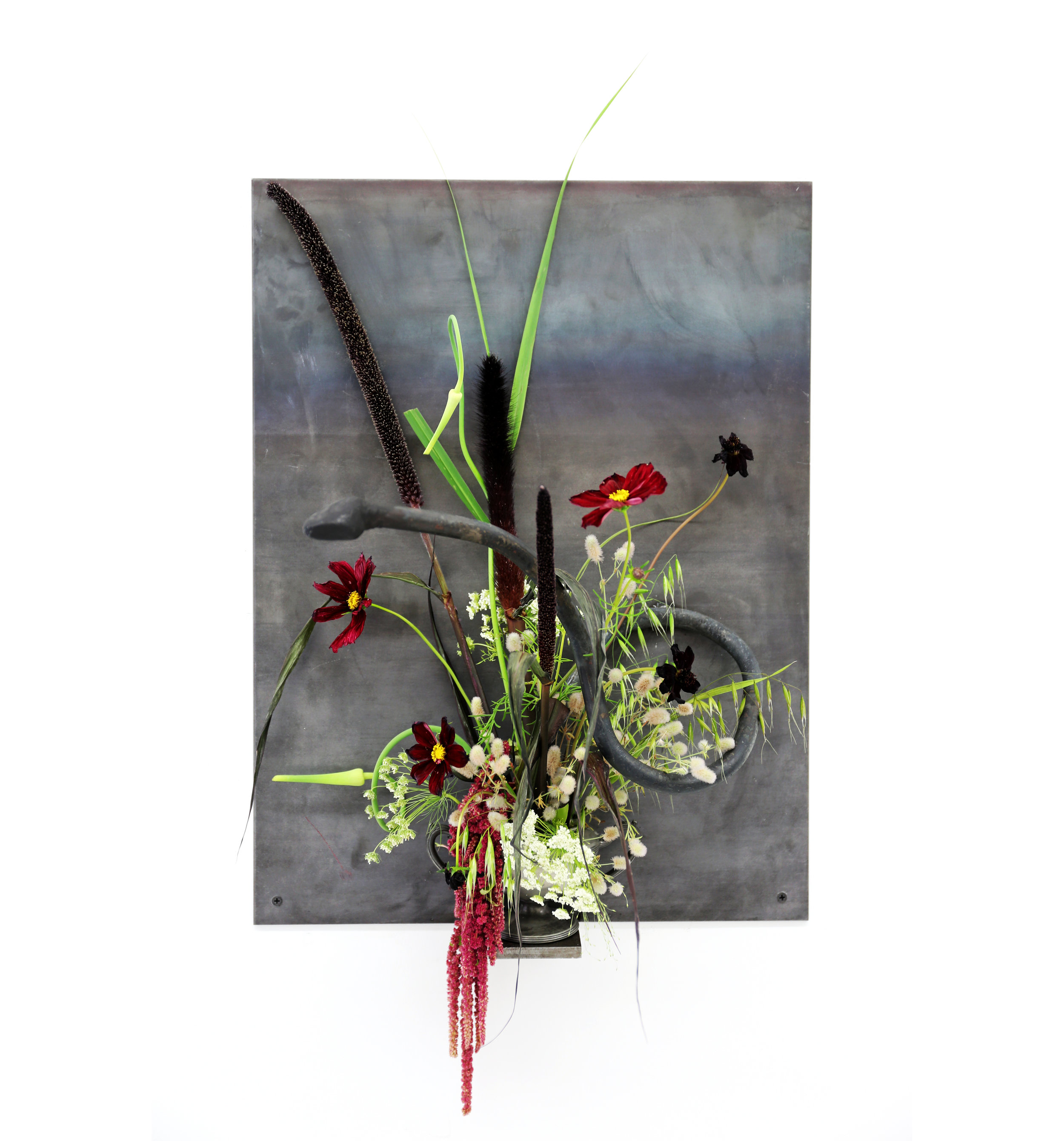 """Speaking in Tongues, in collaboration with Micah Rosenblatt and Alex Crowder 18""""x24"""", Cold Rolled torch bent solid steel, hot rolled 1/4"""" steel plate, Chocolate Scabiosa, Queen Anne's Lace, Sea oat Grass, Amaranthus, Snake Alium Onion, Cat Tail, family heirloom vessel"""