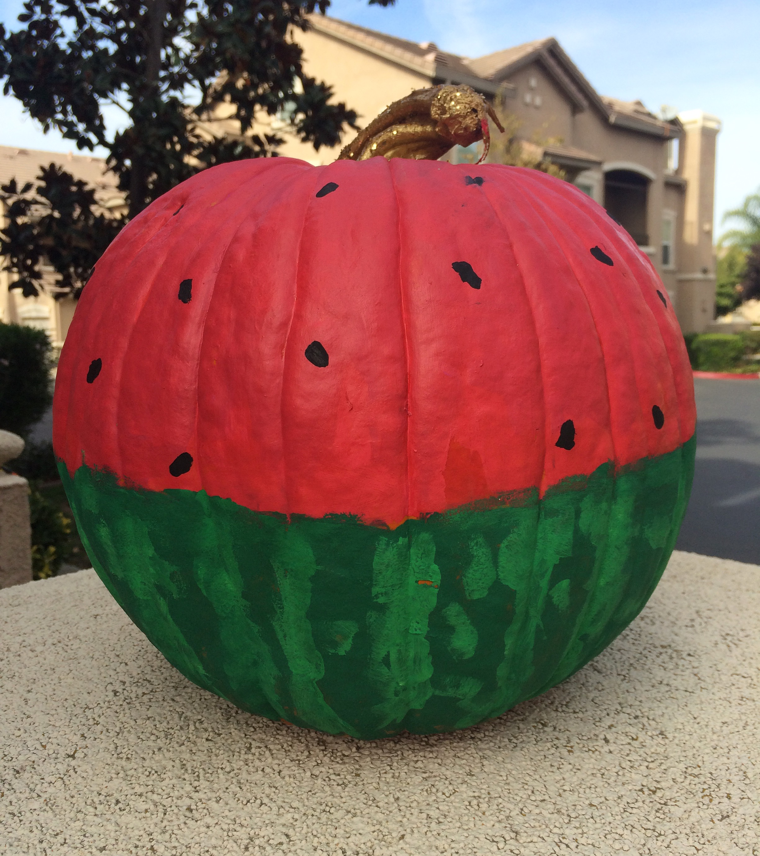 My watermelon pumpkin. I want to keep it forever and ever.