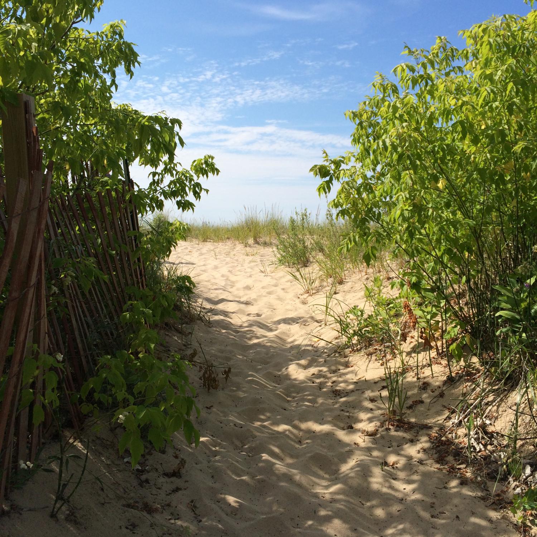 LEELANAU, MICHIGAN: THE BEACHES. - JUL. 2015