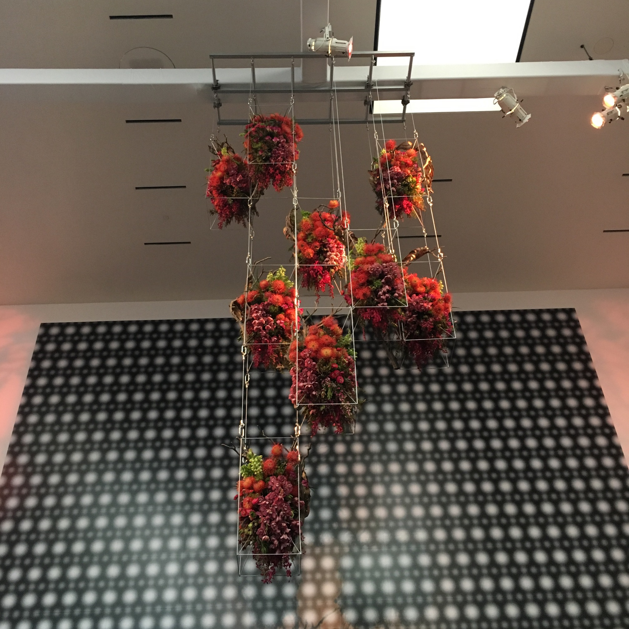 """The hanging sculpture of plants in the """"lobby"""" of the museum. I found the artist, Patricia Gillespie,on Instagram and really enjoyed seeing the progress photos she shared of this piece. She has done hanging arrangements before, and after discovering her work, I've added this career to my list of dream jobs. (Her Instagram feed is  here .)"""