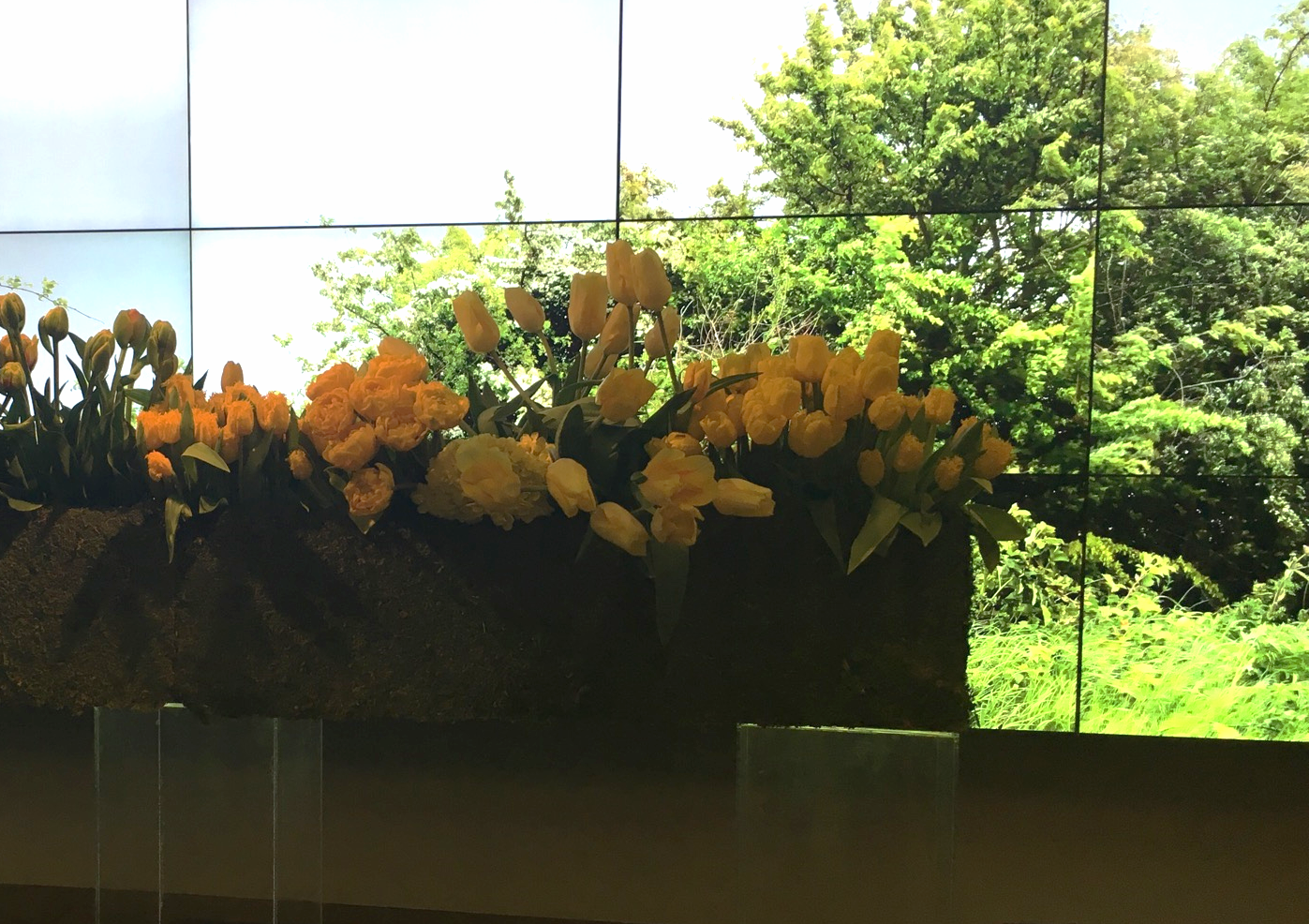 The opening to the exhibit was an arrangement of tulips paired with a video screen that played rotating scenes of nature.