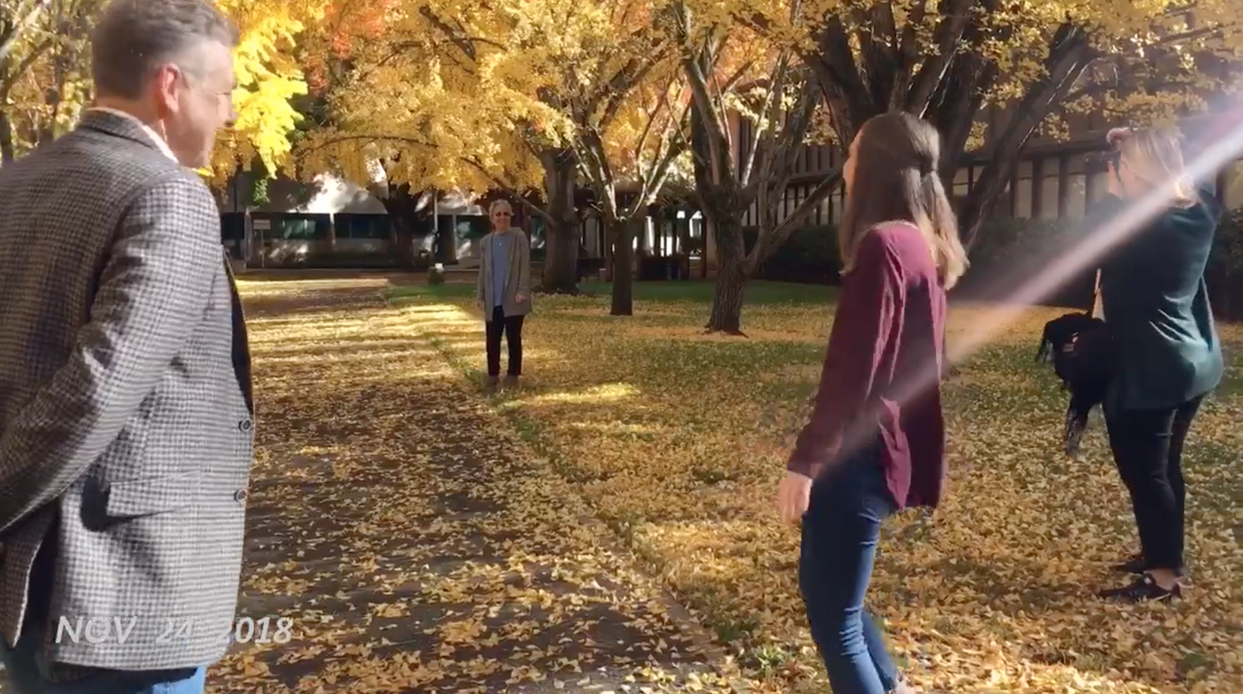 Screen Shot 2018-12-06 at 11.11.27 PM.png