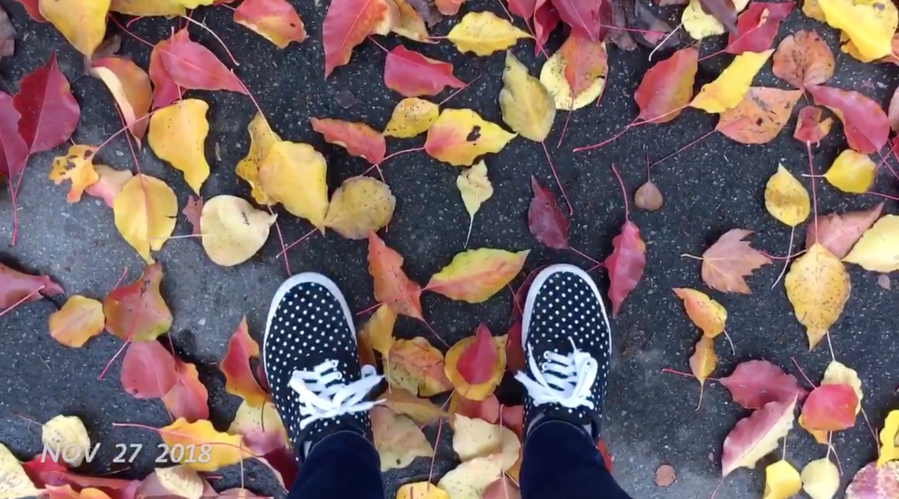 Screen Shot 2018-12-06 at 11.11.38 PM.png