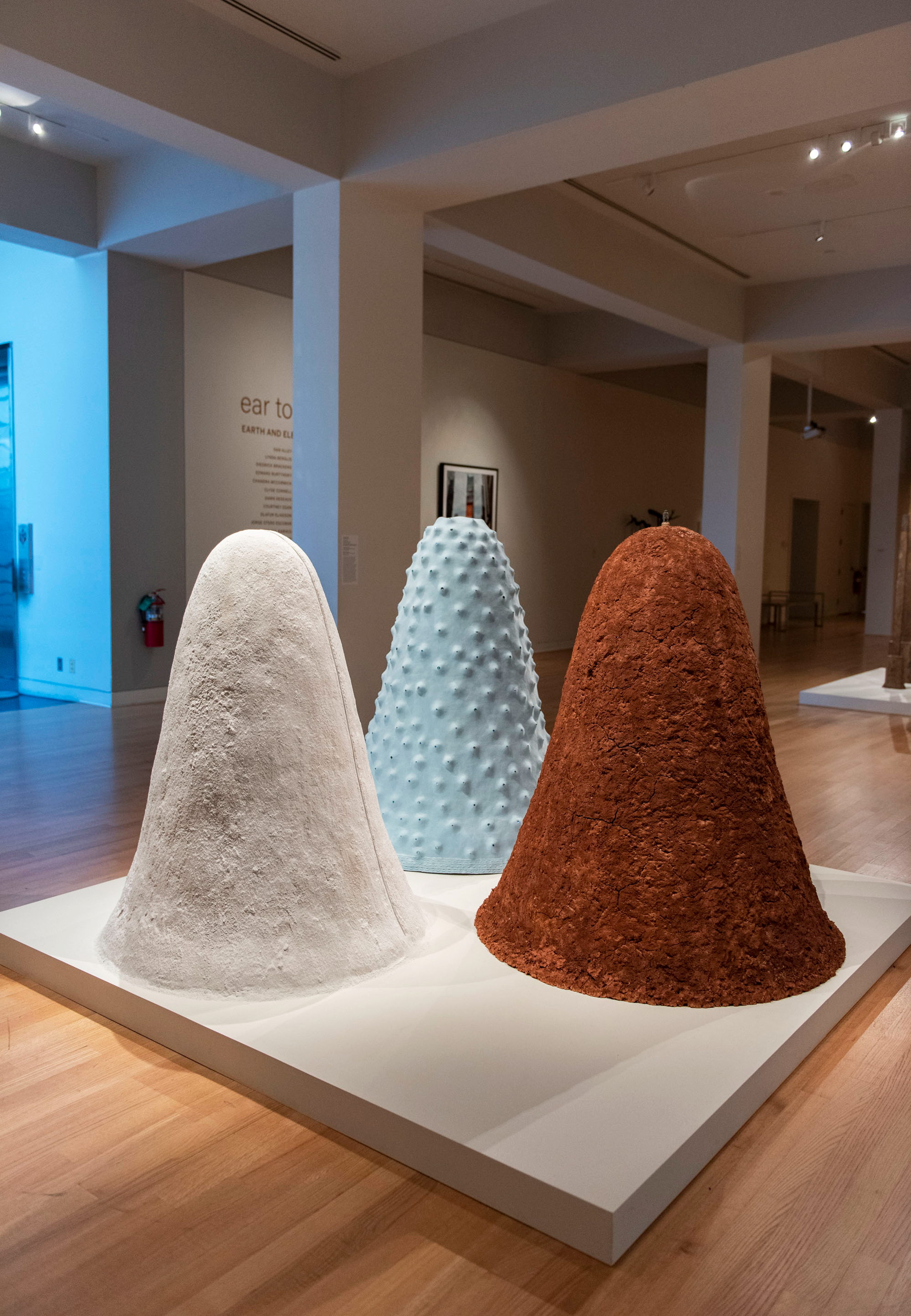 Jennifer Odem   Ear to the Ground: Earth and Element in Contemporary Art   , 2019 Installation view  Image courtesy: New Orleans Museum of Art, New Orleans, Louisiana