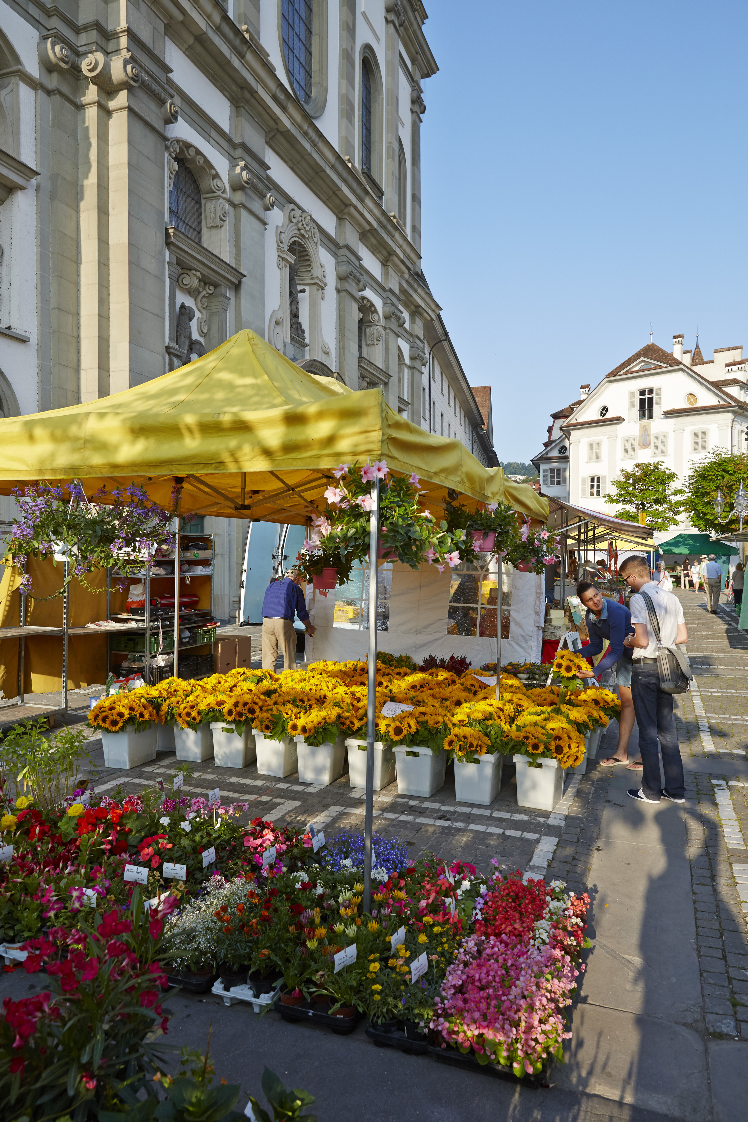 Flowers at the Lucerne market