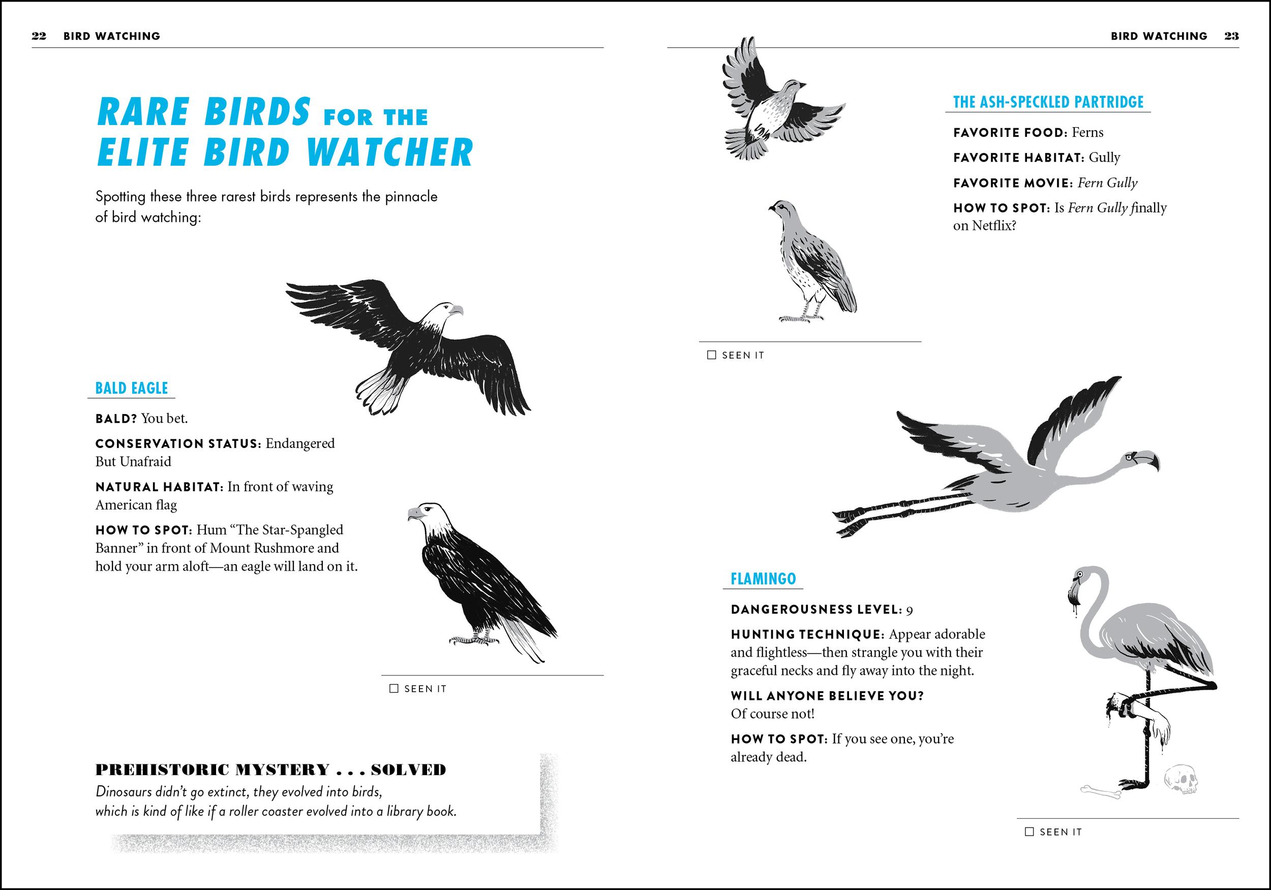 winning_birds-2.jpg