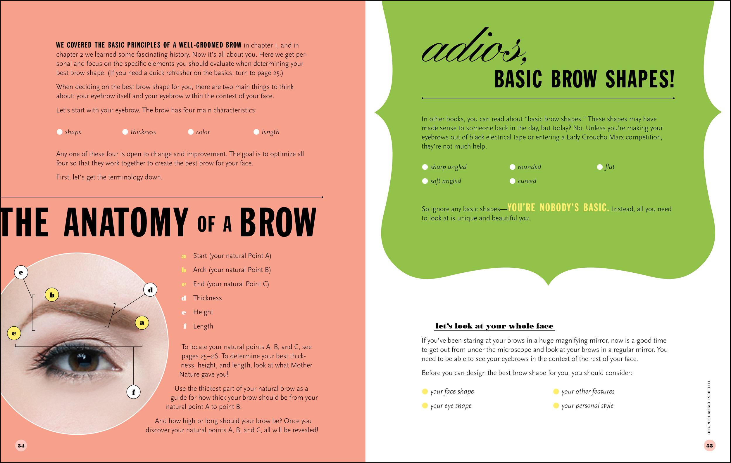 benefit_brows_anatomy-2.jpg