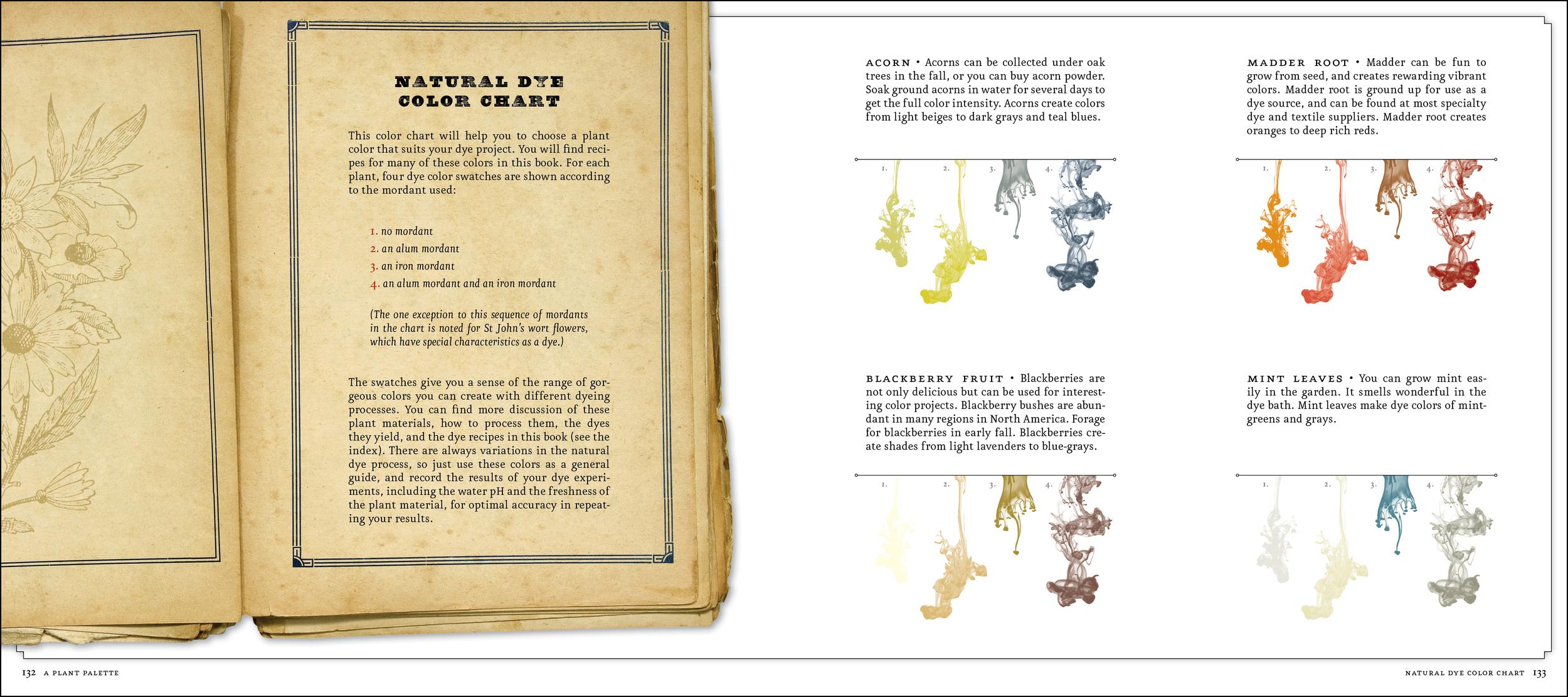 handbook_chart-2.jpg
