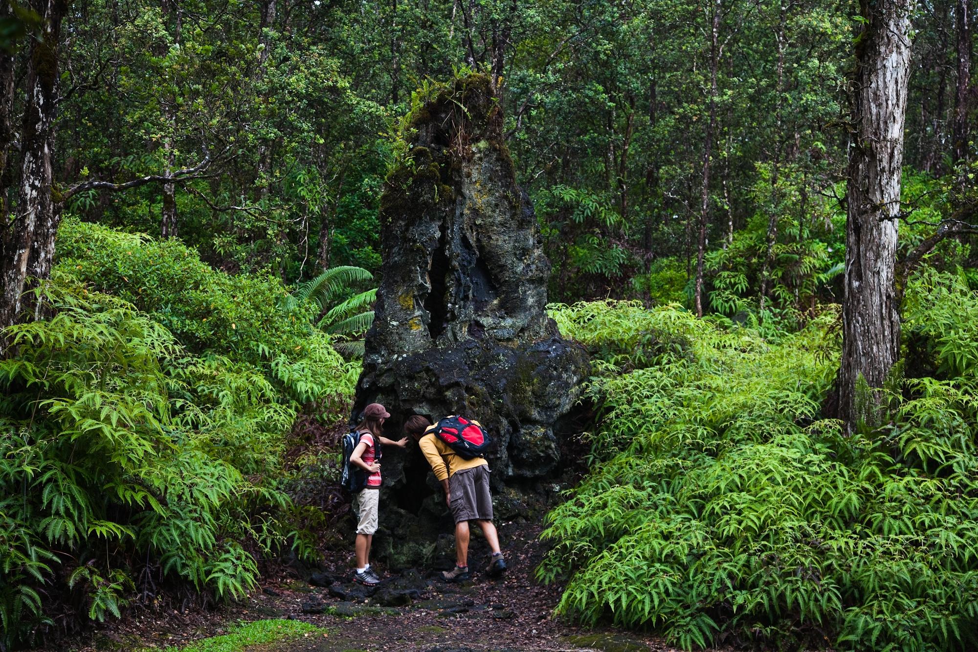 Lava Trees State Park_Island of Hawaii_04701.jpg
