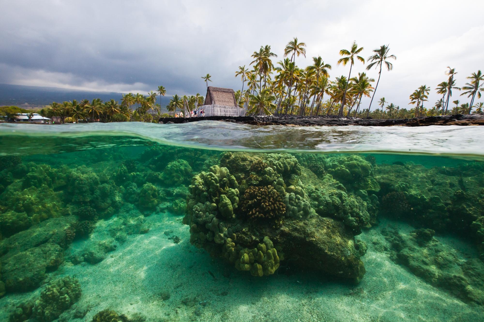 Snorkle_Island of Hawaii.jpg