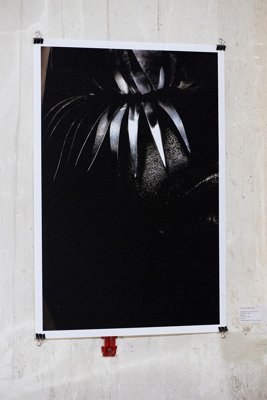 Daniella-Hehmann--Photography-Exhibition-MMA-25.jpg