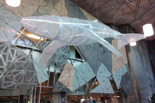 whale at Fed Sq.jpeg