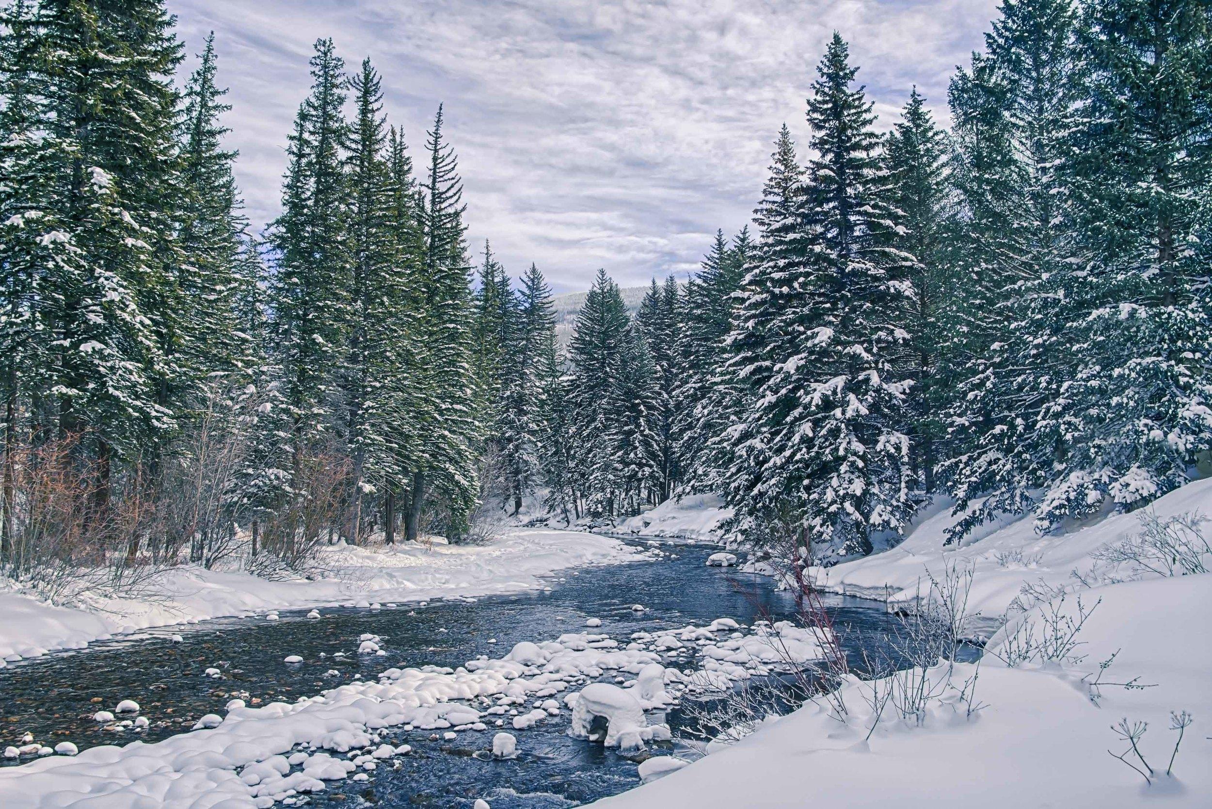 Creek-1.jpg