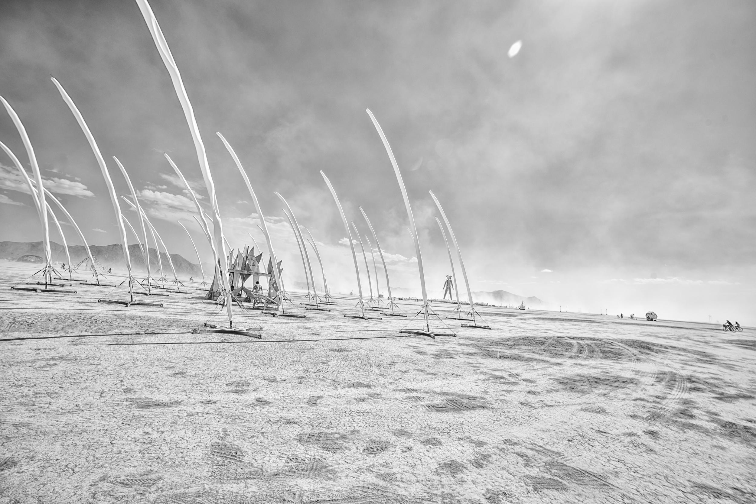 Burning Man 2014-4.jpg