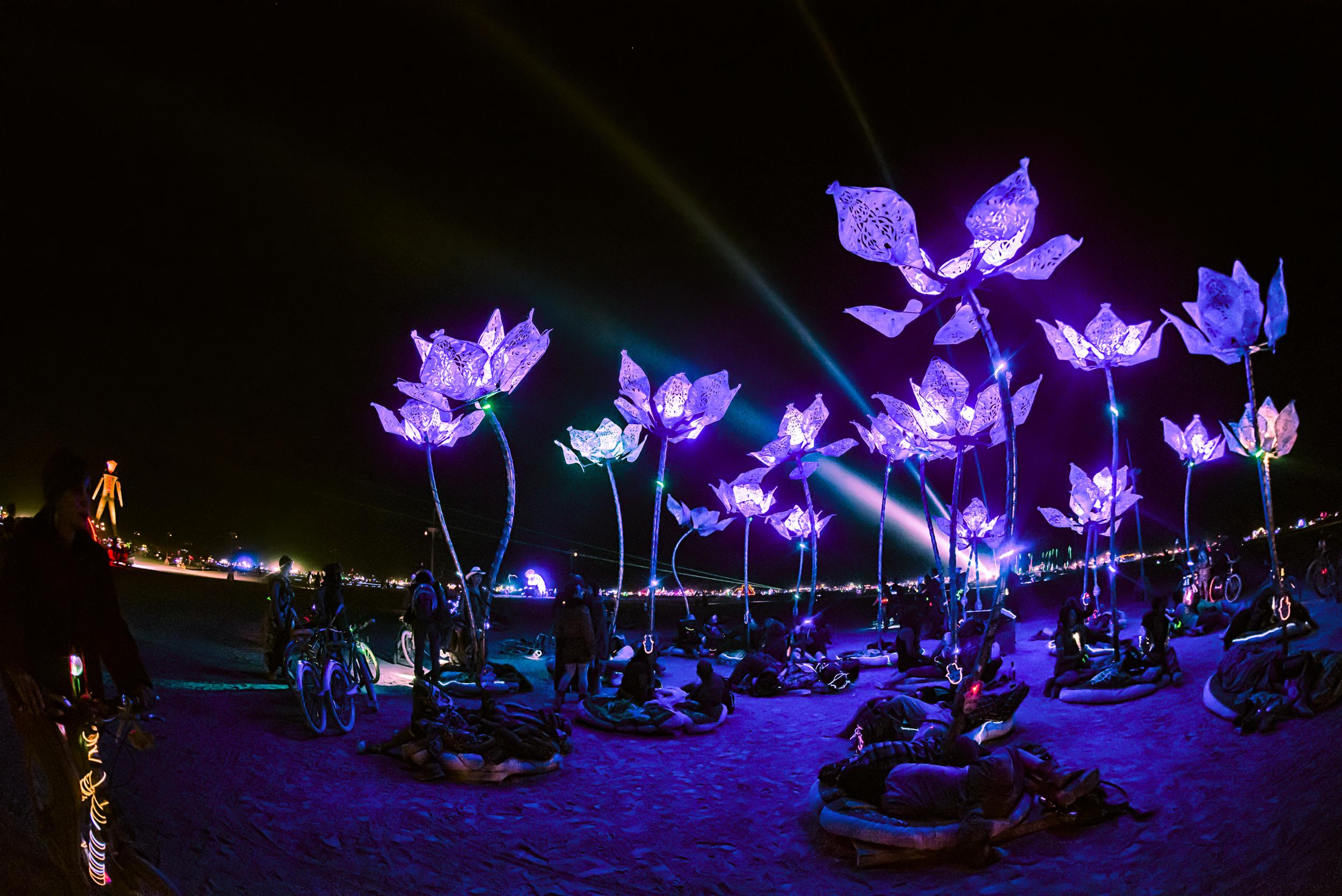 Burning Man 2014-17.jpg