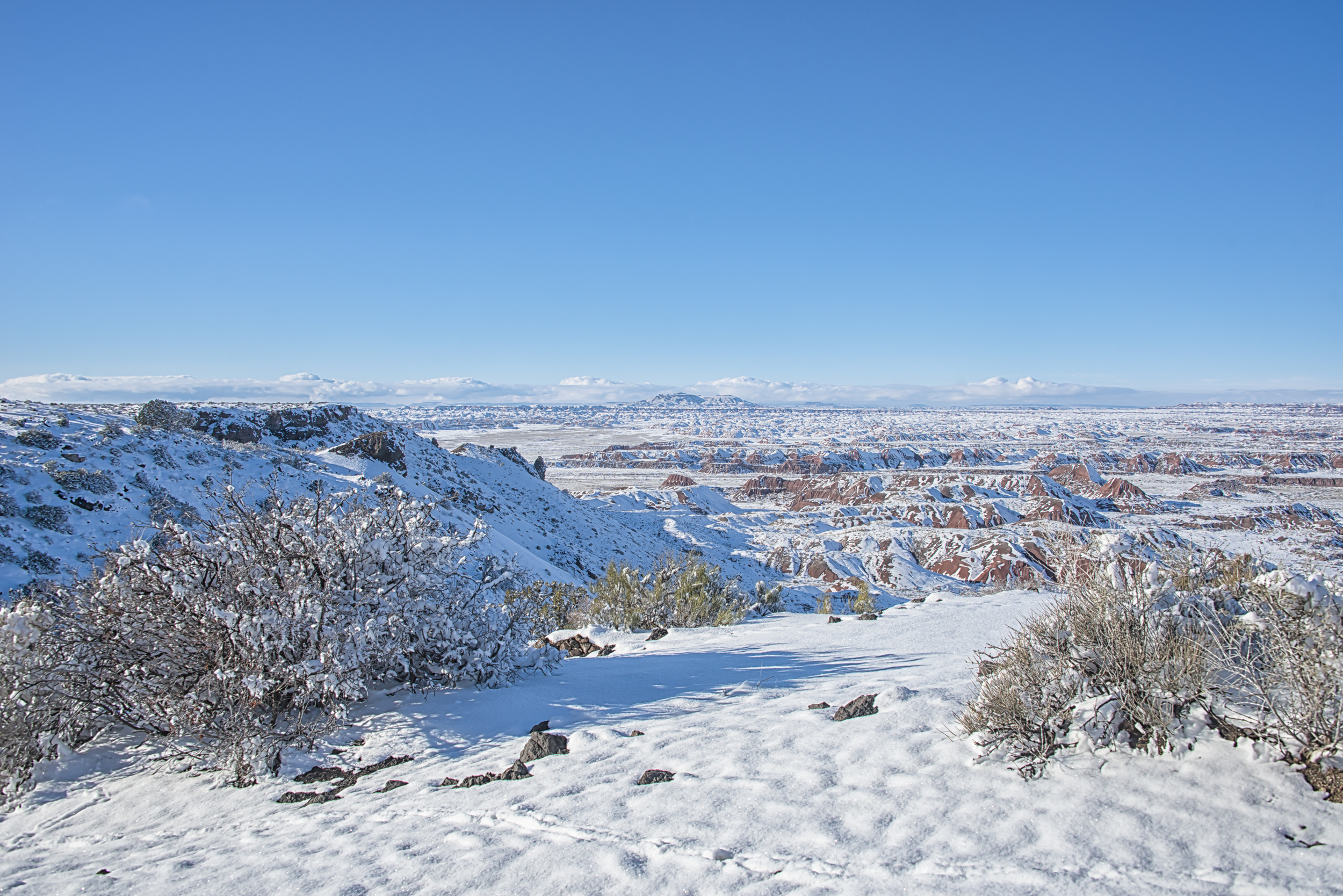 A Painted Desert Painted White-1.jpg