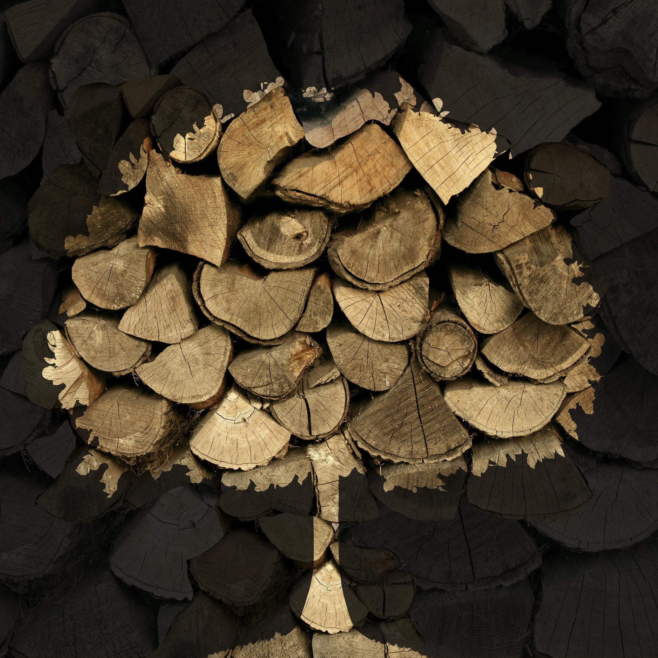 Wood-Tree.jpg