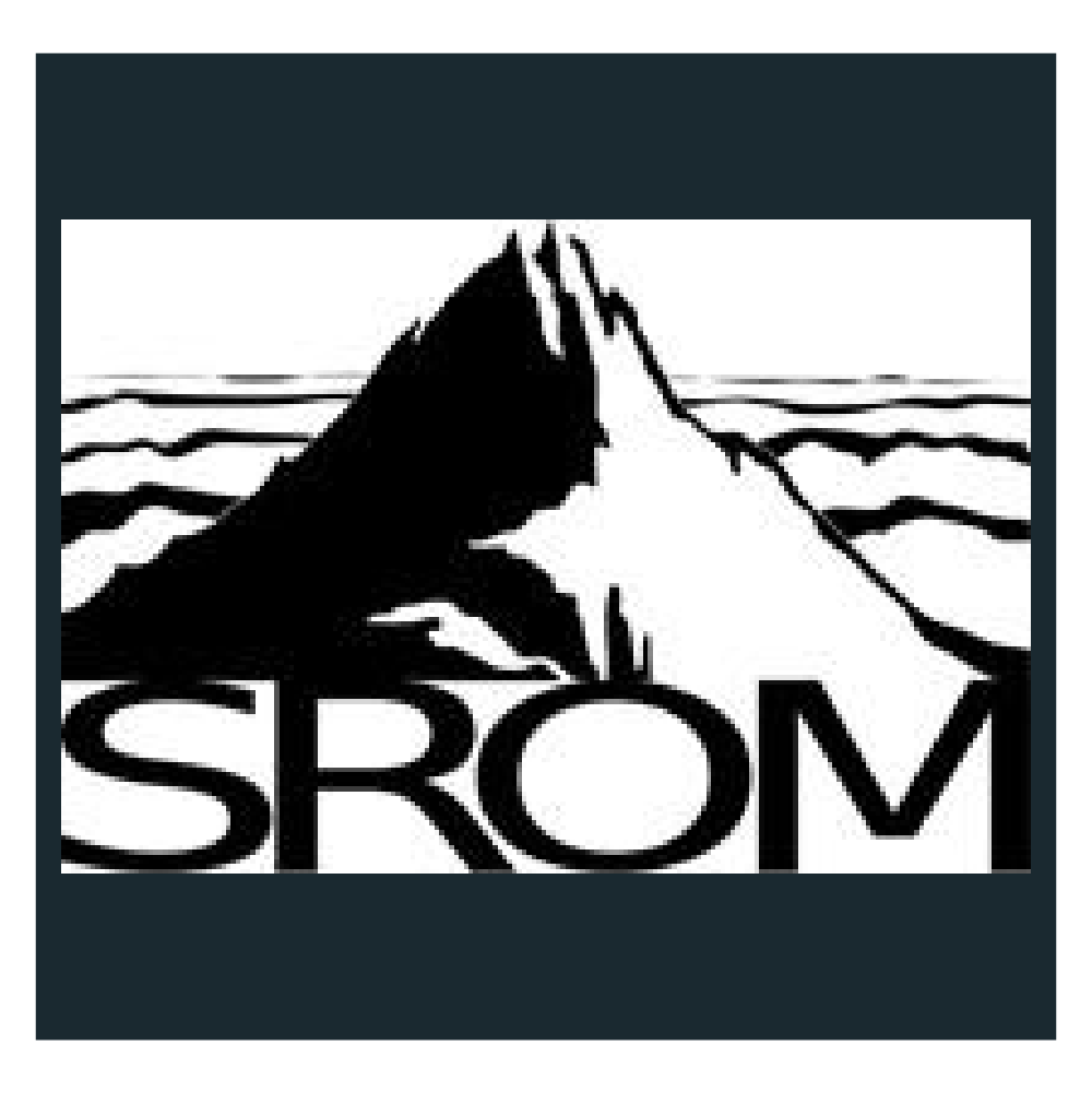 SROM_Icon.png