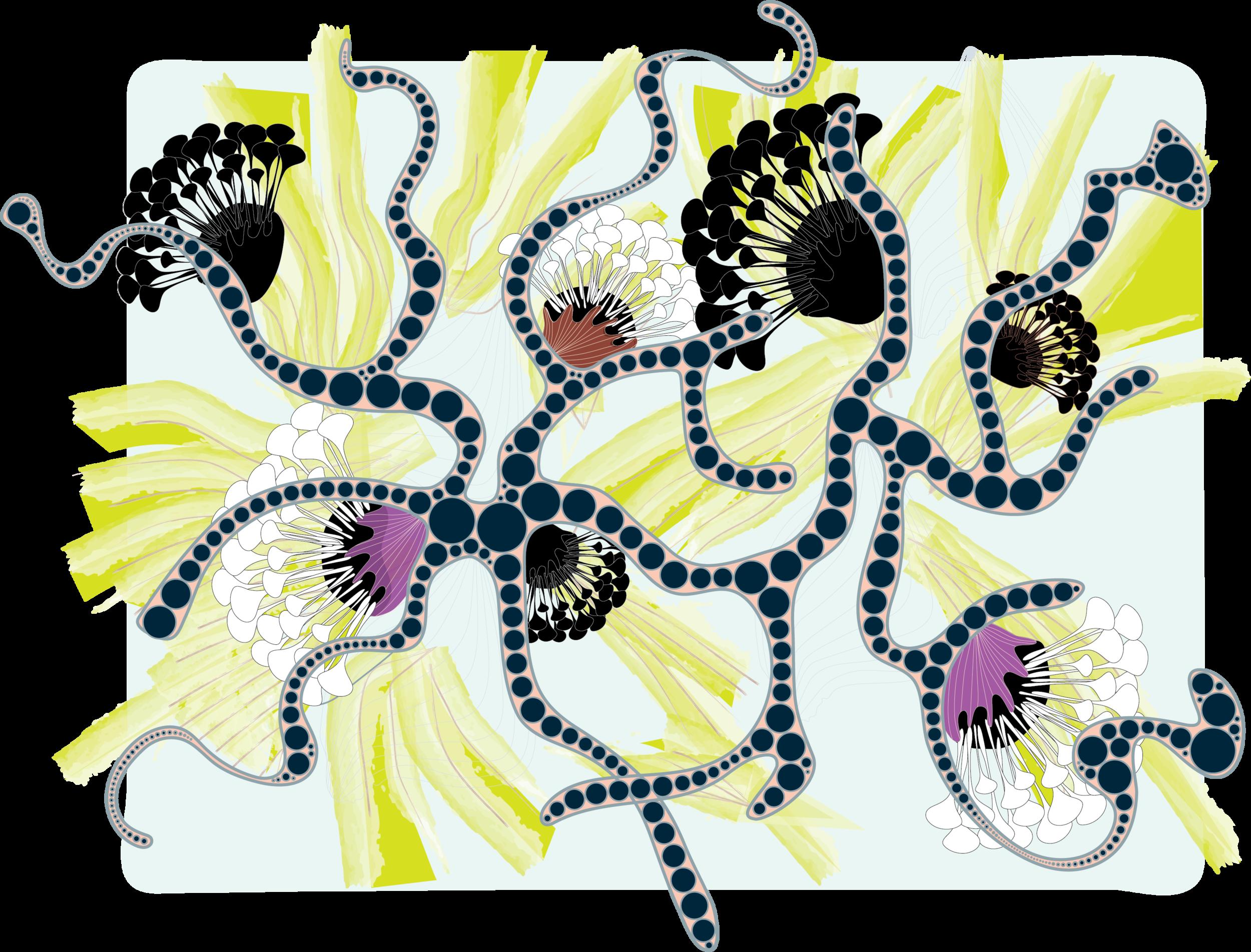 flower artwork.png