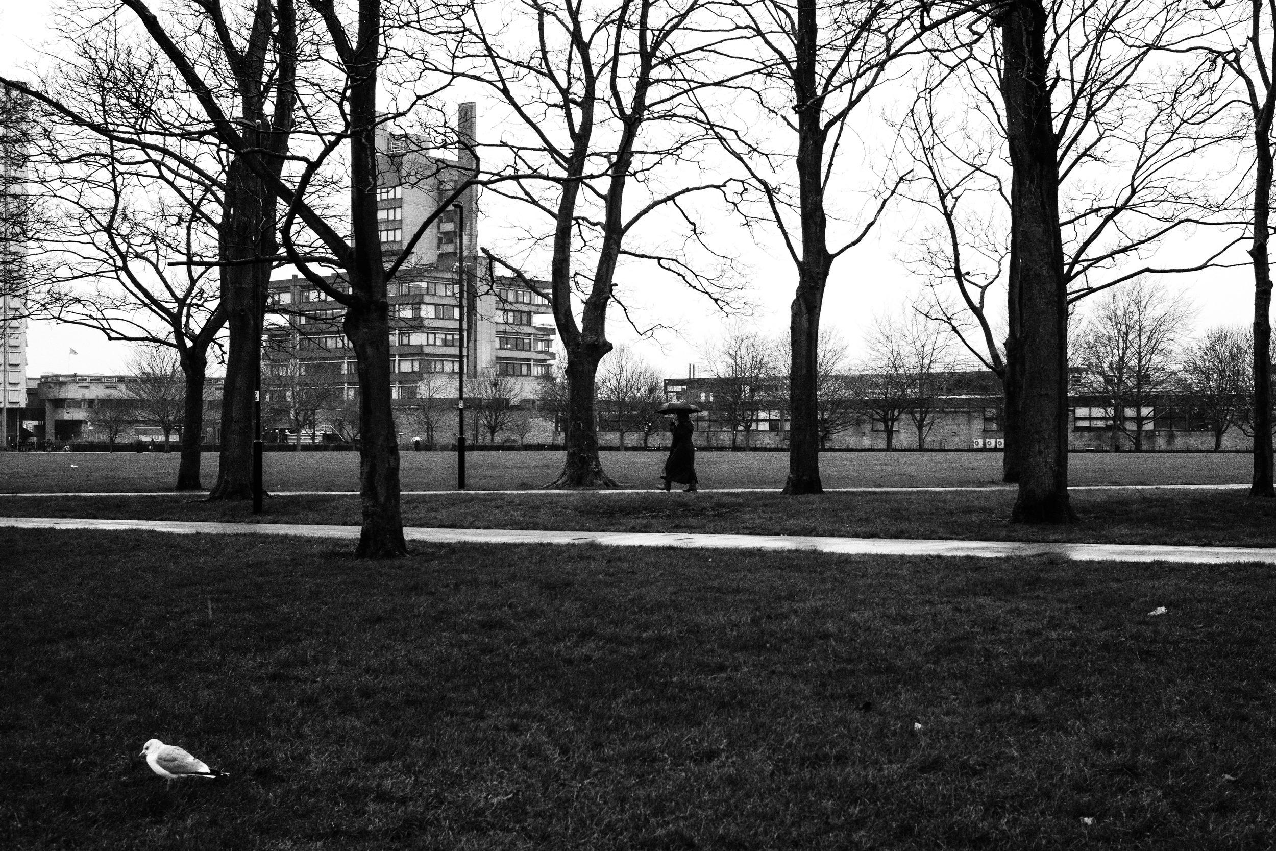 Leicester - Victoria Park