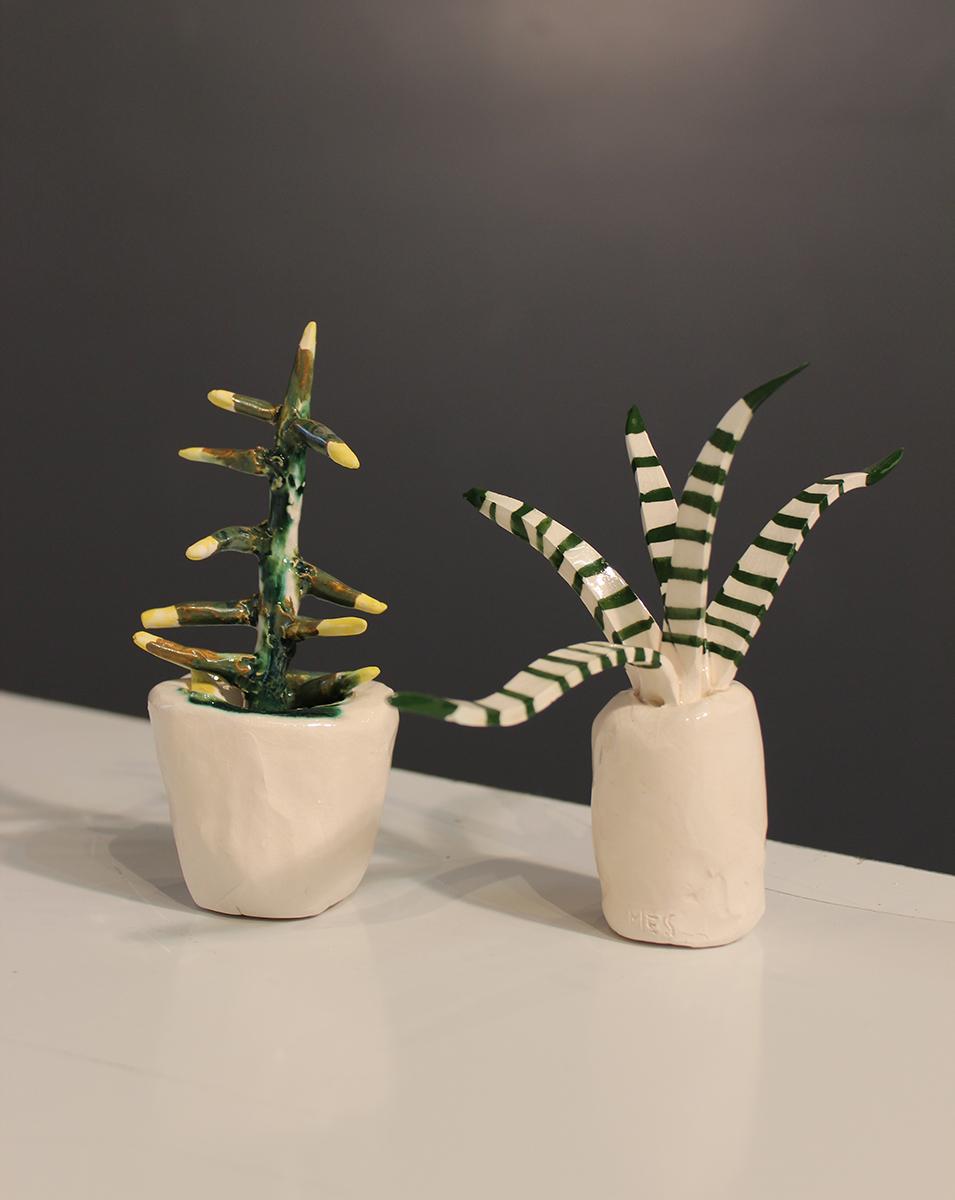 meghansamsonplants5.jpg