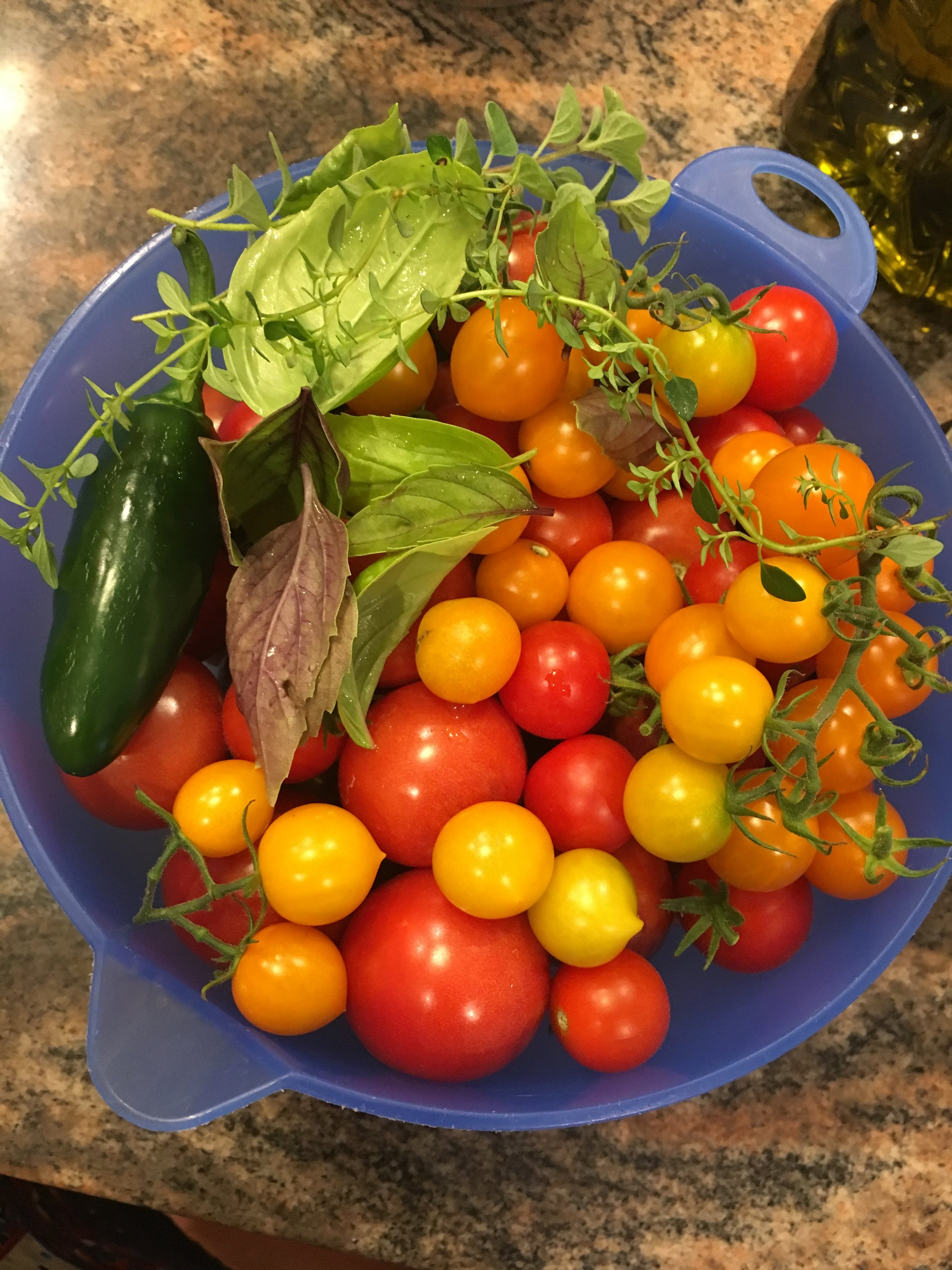 Harvest Time! Tomatoes, Peppers, & Herbs from my Garden. #tevgardens