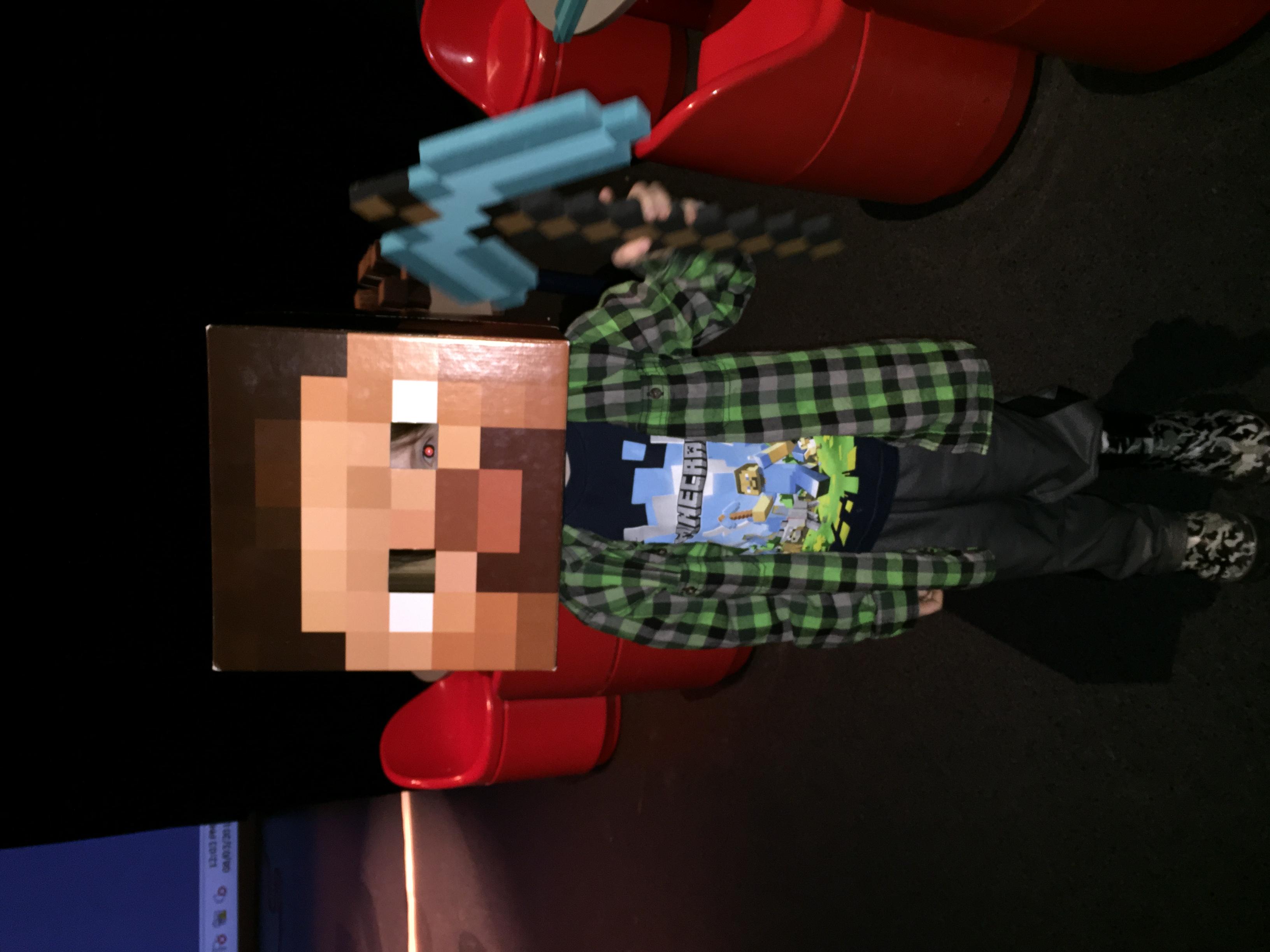 Minecraft Workshops!