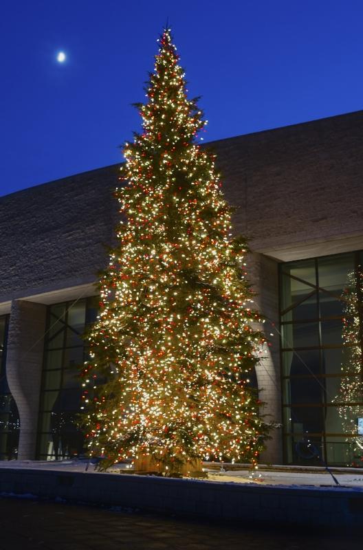 museum-of-history-christmas