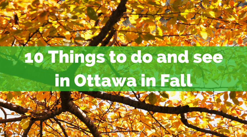10 Things to do and see in Ottawa this Fall.png