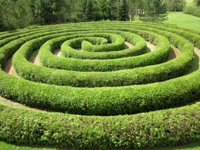 Saunders Farm Mazes