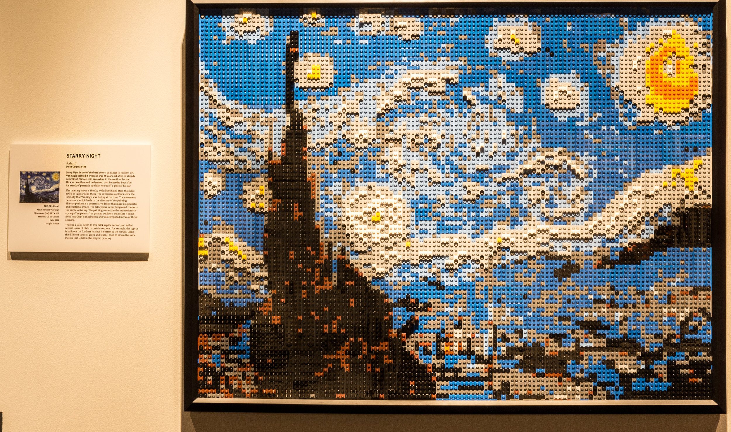 Starry Night The Art of The Brick