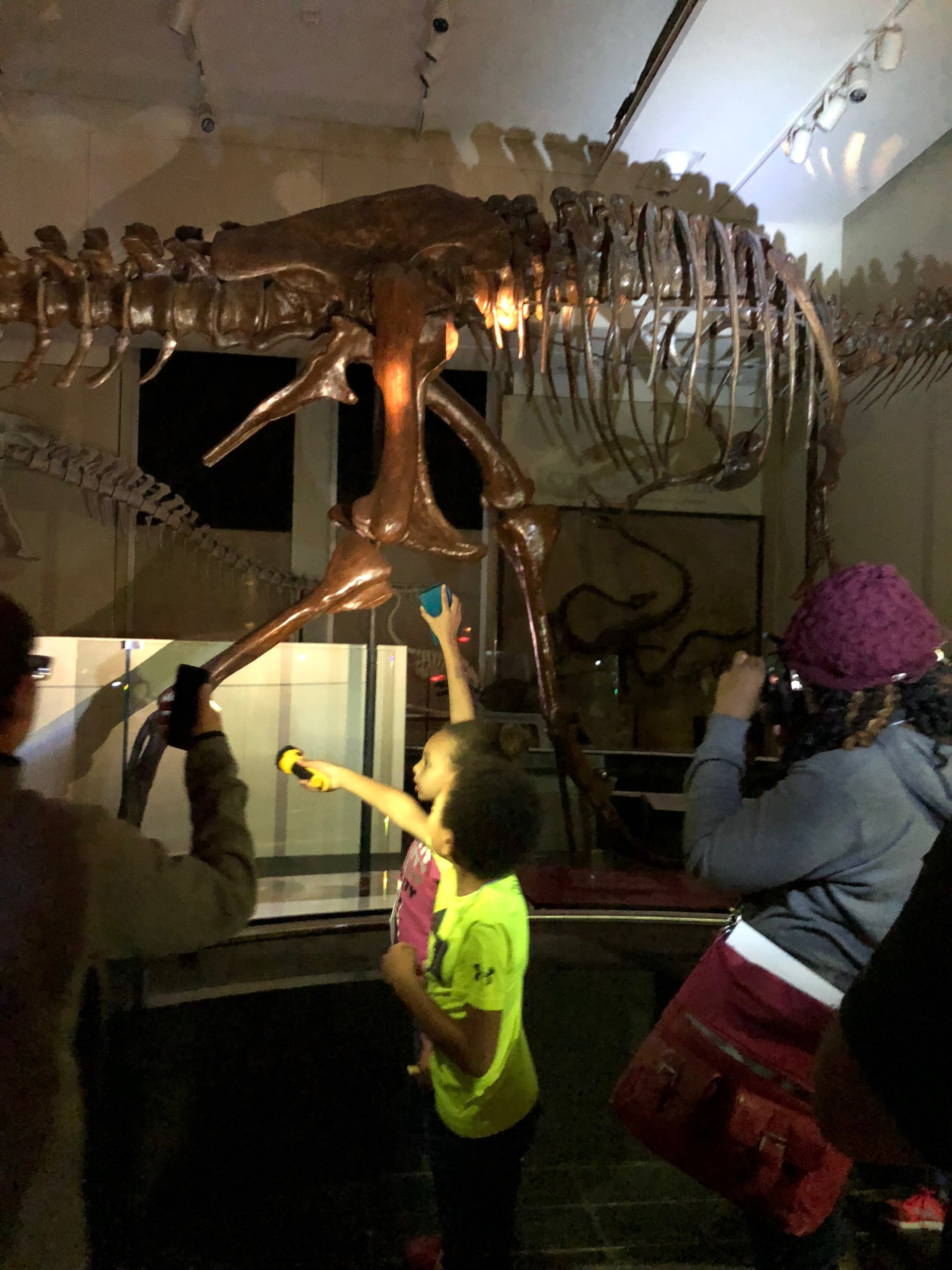 Nature Sleepovers at the Canadian Museum of Nature - Dinosaurs
