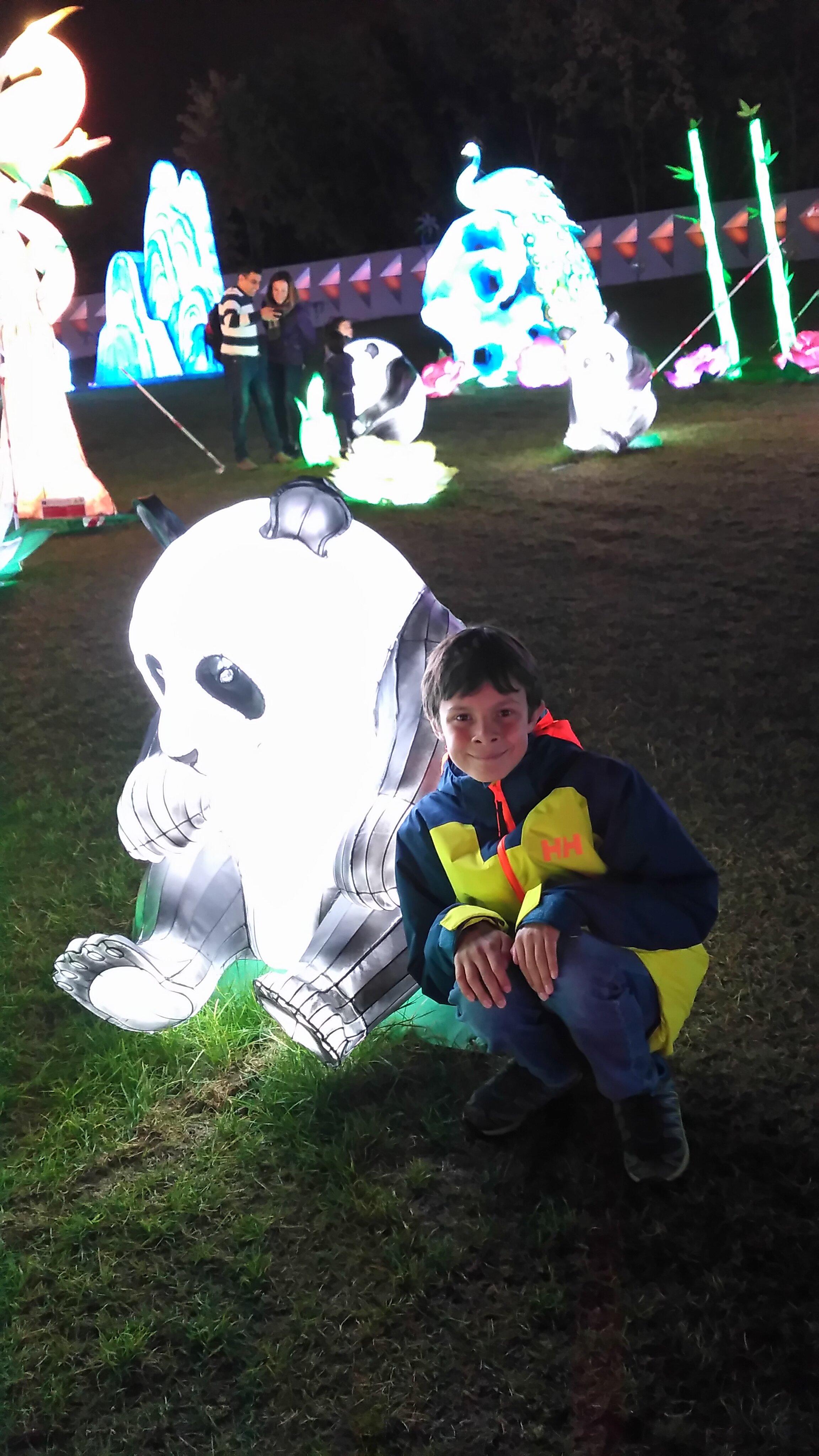 Lantern Pandas Montreal .jpg