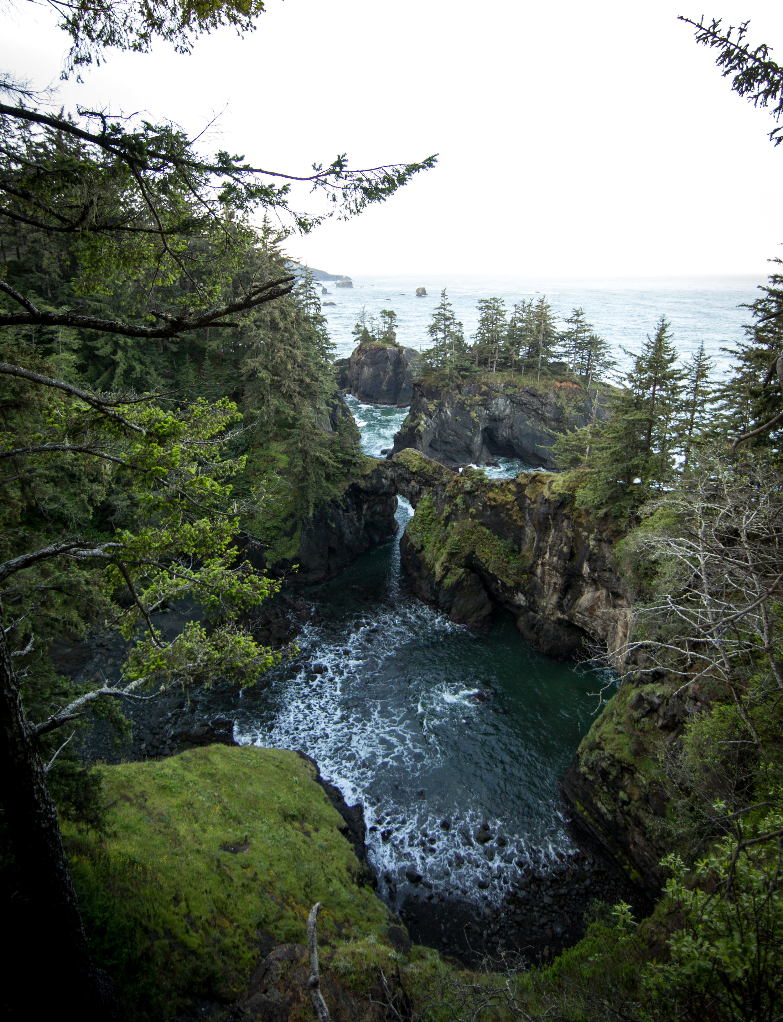 170517_BA Brookings Oregon V228.jpg