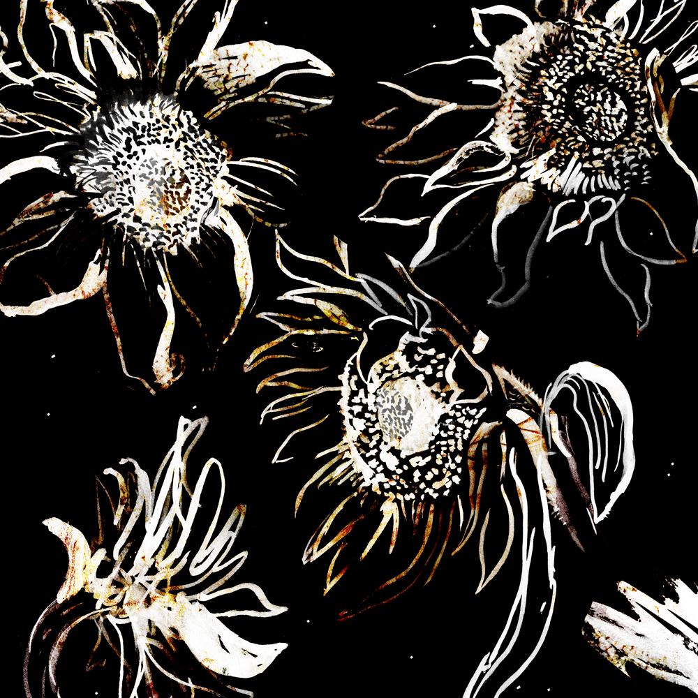 sunflower_kw_web.jpg
