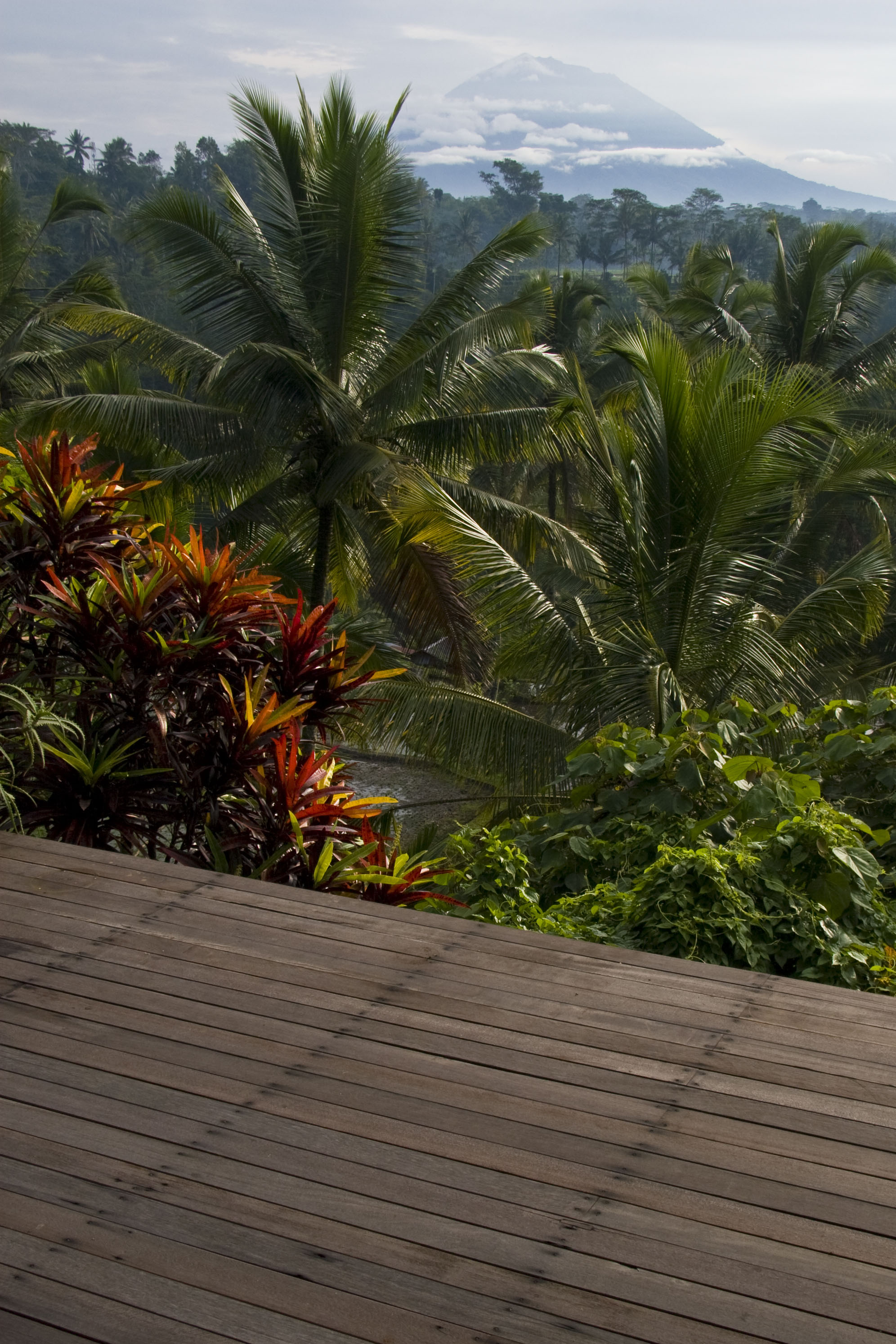 Deck Exterior Design Reclaimed Solid Hardwood Ulin