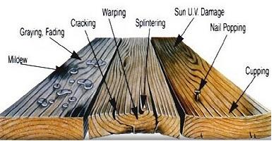 tropicl wood deck bali
