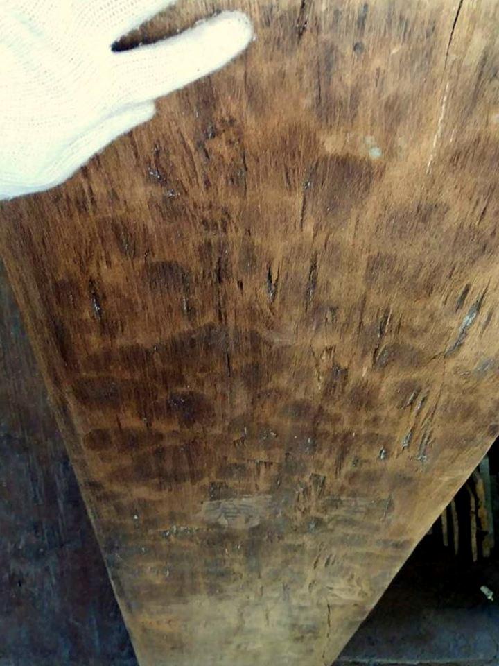 teak plank