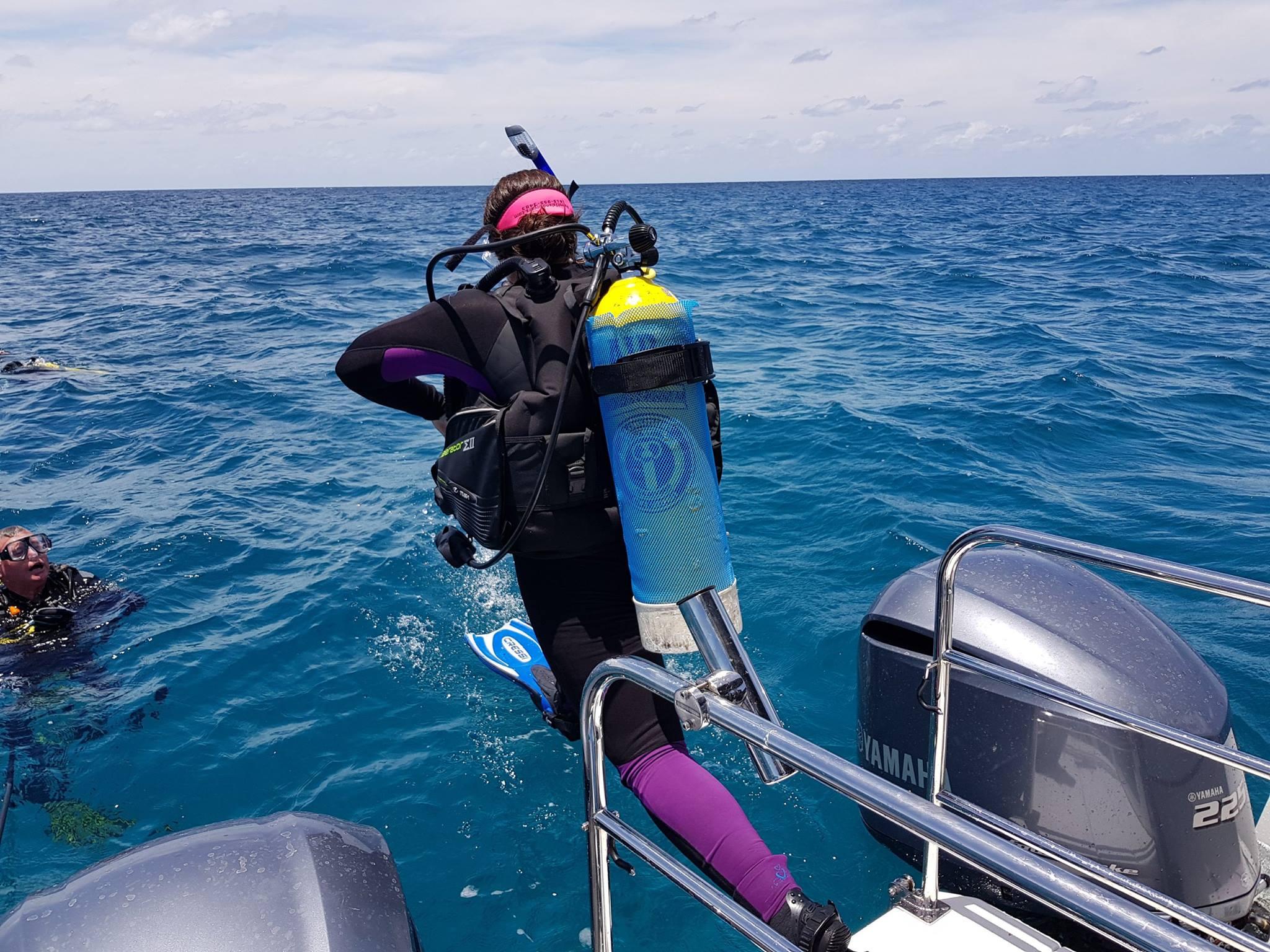 Reef Fish & Dive 1770 6.jpg