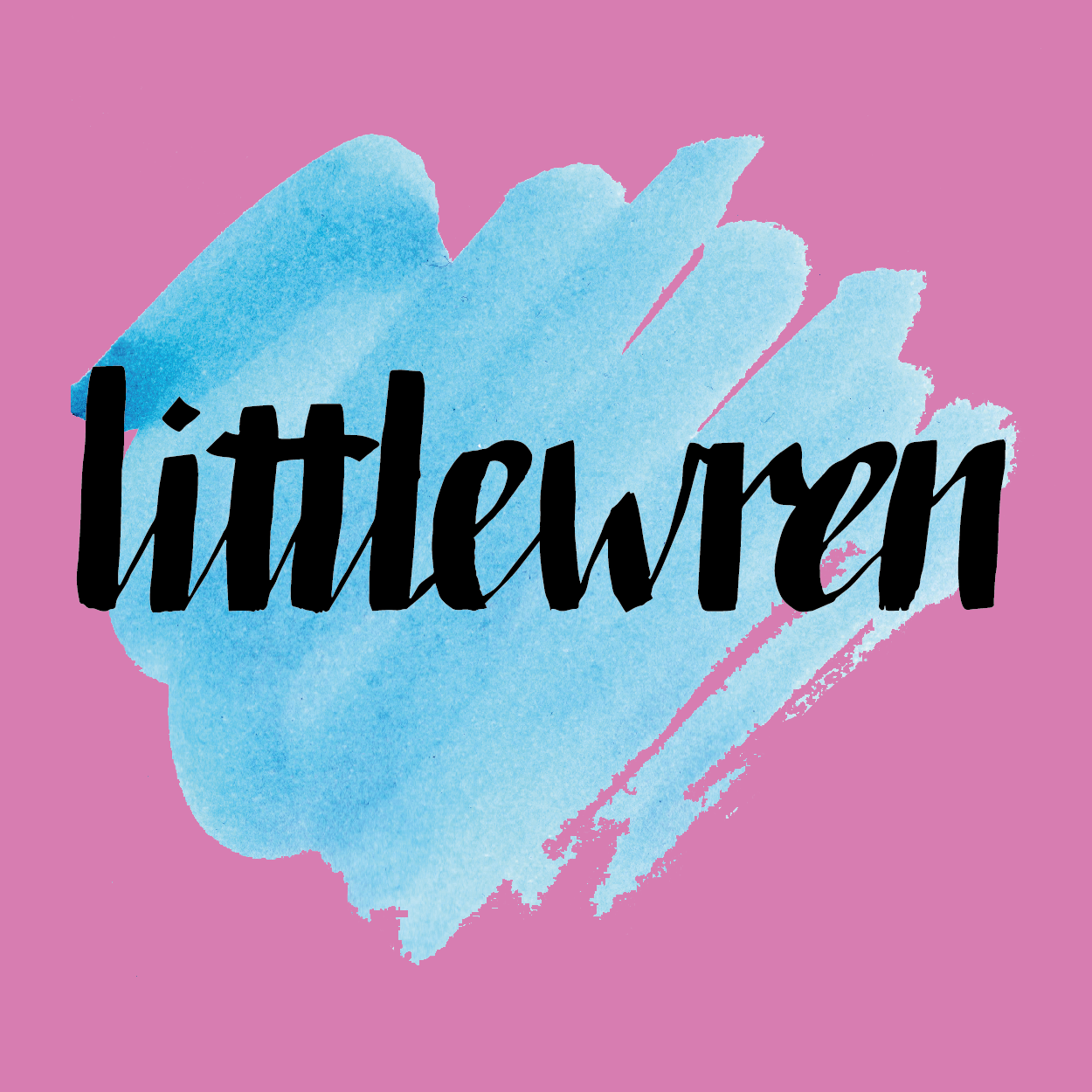 LITTLEWREN   Logo design, various illustration and photography work for  littlewren , an online publication for young women with curious minds and creative hands.