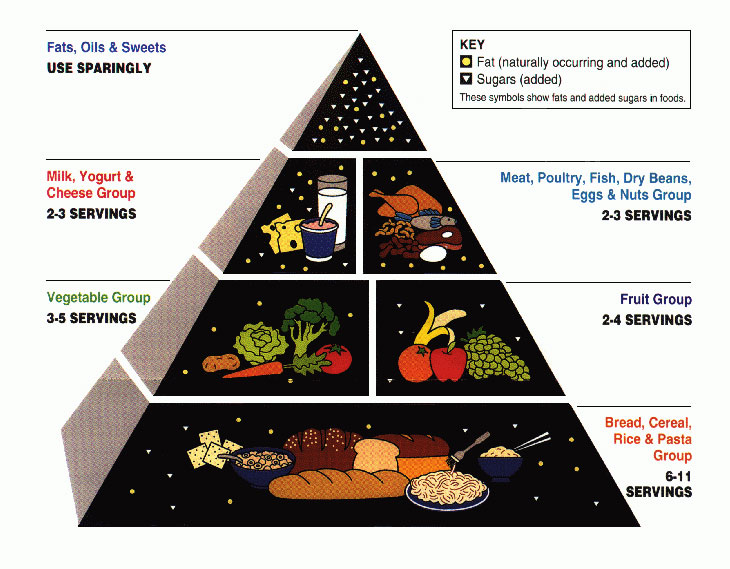 The 1991 Food Guide Pyramid
