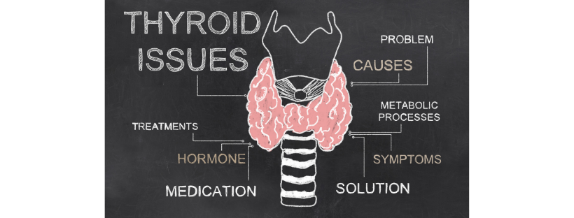 Copy of thyroid Alive!.png