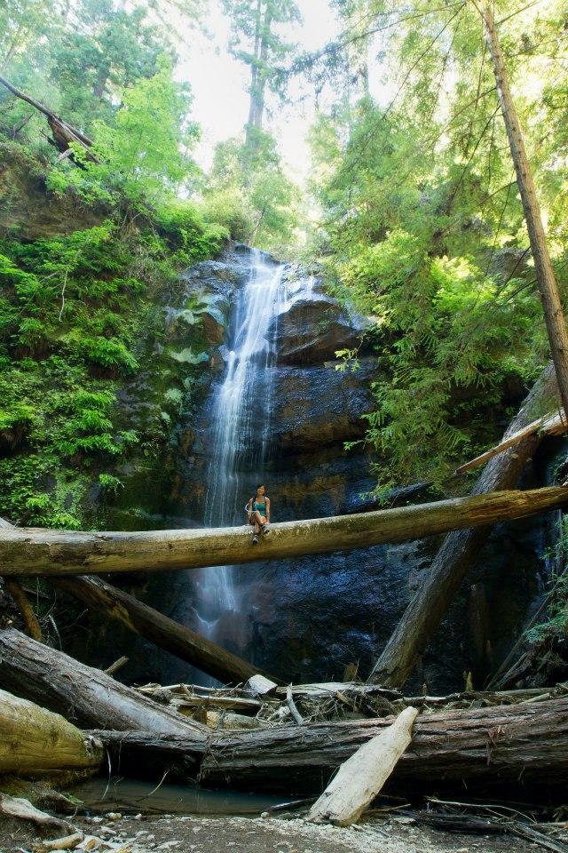 I wobbled across a fallen tree in front of Silver Falls