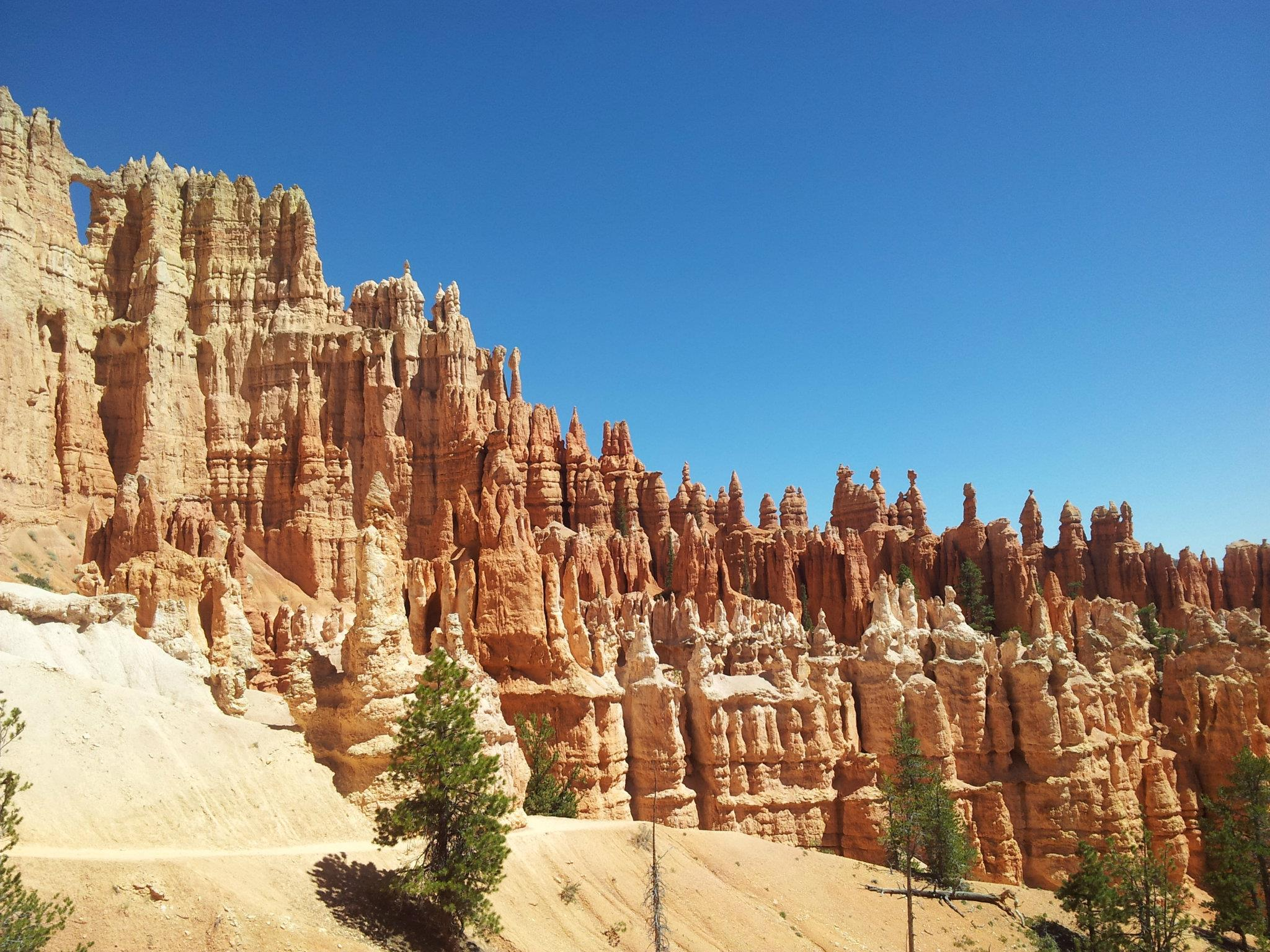 The numerous hoodoos had some great coloring to them