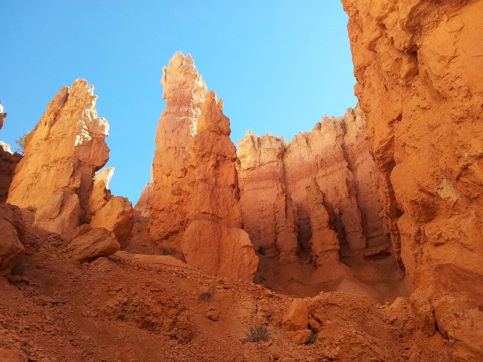 As you descend, the tall structures called hoodoos rise above
