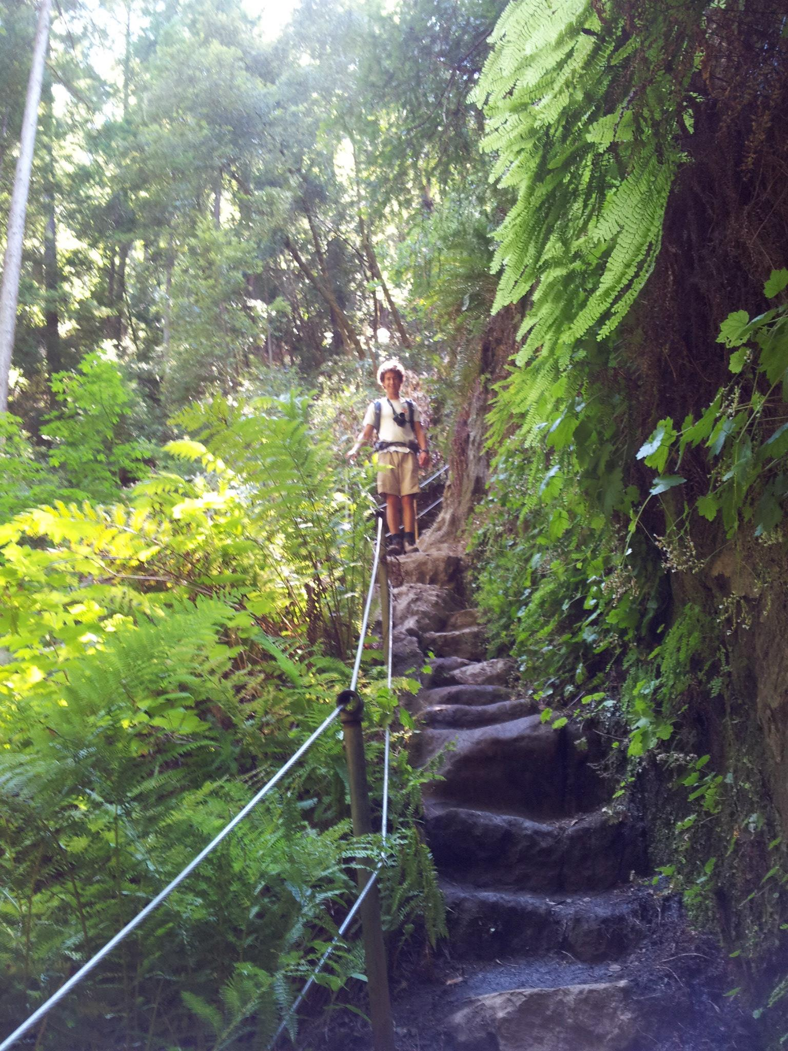 The trail was well maintained, even when it carved through wet rocks