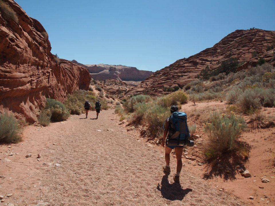 The exposed, sandy trail on the way to the canyon
