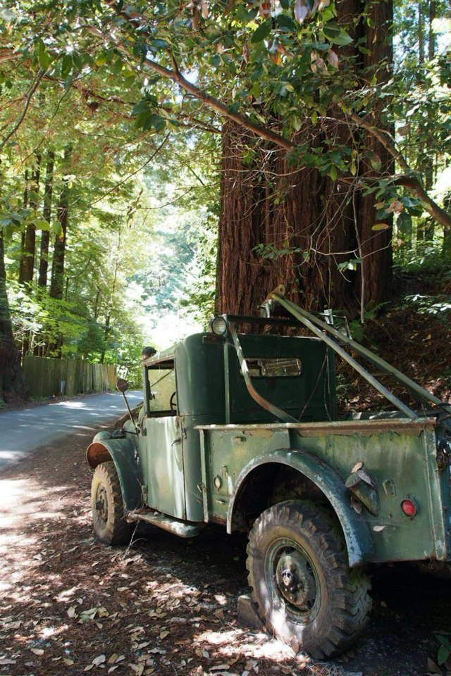 We passed this old truck on the narrow road to the park, and Kyle managed to make it look quite artistic in this photo