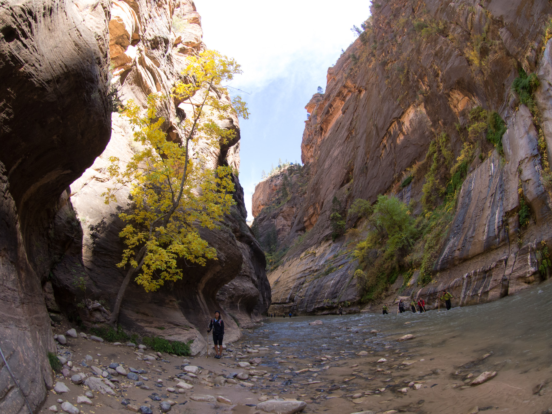 The autumn colors made the narrows look completely different than last year when we went in June
