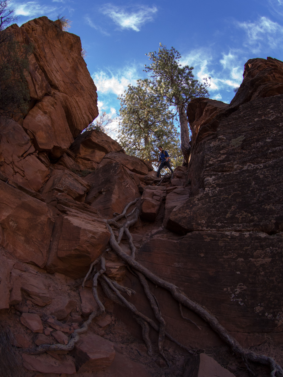 The correct, but steep way down into the canyon